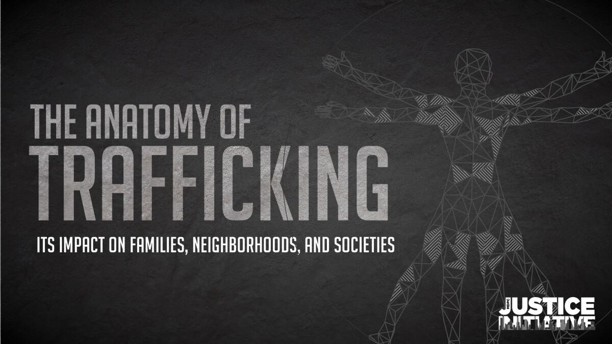 The Anatomy of Trafficking